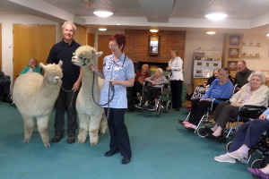 Visit to Letchworth Care Home