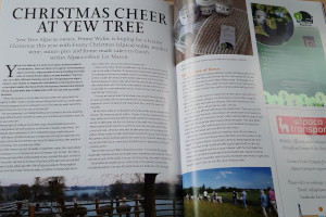 Yew Tree in the news!
