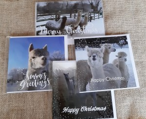 Selection of 4 Christmas cards