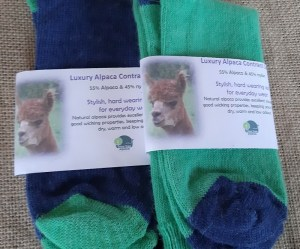 Current label on navy-pea and pea-navy contrast socks